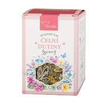 Čelní dutiny bylinný čaj sypaný