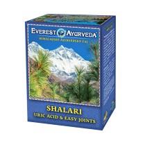 SHALARI-Dna a kloubní otoky čaj 100 g